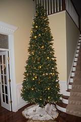 Christmas-22 (leebatts295) Tags: christmas dinner zoe maurice marion jordan walker reese ann zelda cedric skip leigh mikel kendall deacon jaelyn 2015 batts patick jesselyn carterina