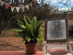 country life (maximorgana) Tags: portrait sky tree rock stone blackwhite chair picture dry ground hose plastic cushion maceta verja maceton banderilla
