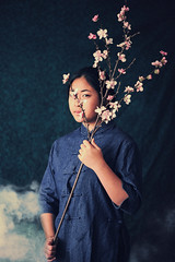 Lunar New Year, Book 2 (Oriental Folklores #10) (Dizzodin) Tags: new flowers portrait art cherry asian dorothy lights smoke traditional year blossoms fine chinese peach culture korean vase lantern conceptual lunar letrendary