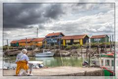 sky, colors and painter (patrick Thiaudiere Thanks for + 500 000 views) Tags: sky color colors port boats boat dock quiet couleurs bateaux ciel painter quai hdr couleur calme latremblade lagrve