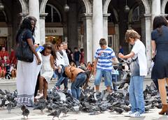 DSC_2234 (erinakirsch) Tags: city travel venice sea people italy bird walking italia feeding pigeon pigeons crowd tourists explore feedingthebirds crowds peoplewatching veneto veniceitaly