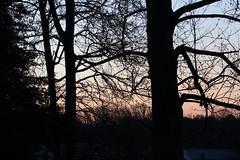 Sunrise (Me in Va) Tags: sun silhouette sunrise virginia shine richmond va goodmorning daybreak rva firstlight