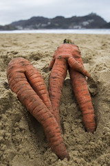 Nudismo en la playa (IRENE ARTG) Tags: playa nudismo zanahorias