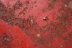 (xorama) Tags: muster rooste punane vrv