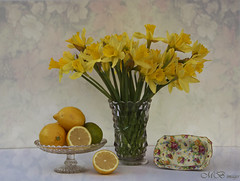 Still Life with Daffodils (maureen bracewell) Tags: flowers stilllife texture yellow lemons bouquet arrangement daffodils vintageglass maureenbracewell saariysqualitypictures