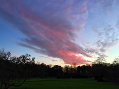 Red Sky At Night (Marc Sayce) Tags: park red sky night clouds forest downs oak dusk forestry alice south january hampshire surrey lodge research national holt horn commission bucks bentley farnham 2016 at blacknest sdnp