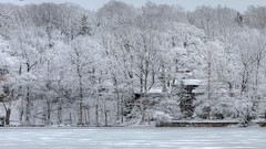 After The Storm (DaveGarPhoto) Tags: statepark snow ice landscape newjersey ringwood winterscene northernjersey