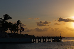Sunrise Silhouette (chantsign) Tags: trees sky birds silhouette clouds sunrise dock colorful keywest