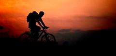 Schau nicht zurück.. (cornelia_auguste) Tags: fahrradfahrer blaue stunde abendstunde rheinaue düsseldorf abenddämmerung abendlicht abendstimmung nrw germany himmel rot sonnenuntergang bikerider