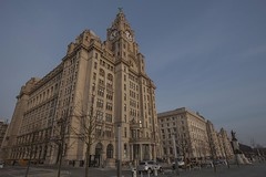 Liver building. (foto.pro) Tags: building liverpool liver mersey scouse