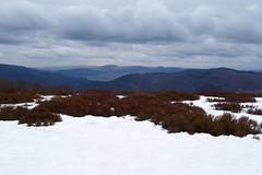 felhős most a régi kék ég / grey clouds on winter sky (debreczeniemoke) Tags: winter mountains landscape hegy tájkép gutin tél rozsály gutinhegység igniş olympusem5 gutinmountains