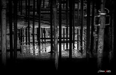 Barras y charcos (adrivallekas) Tags: shadow blackandwhite bw building byn blancoynegro water canon dark puddle construction agua structure reflejo barras build talavera obra reflects charco talaveradelareina blackwhitephotos canoneos6d