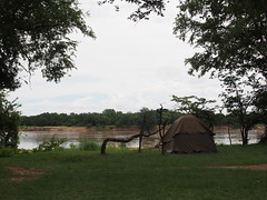 Camping on the banks of the Luangwa River (little_duckie) Tags: africa elephant zebra giraffe hippopotamus hyena zambia bigfive southluangwa southluangwanationalpark