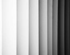 degradado? (chay1288) Tags: light shadow bw luz contrast sombra bn contraste persianas degradado