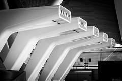 Breathe III (e/rol) Tags: madrid architektur es flughafen spanien terminal4 comunidaddemadrid adolfosuarez