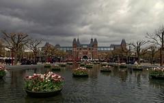 Rijksmuseum (Kronemans) Tags: amsterdam tulips rijksmuseum tulpen vijver tulp amsterdamzuid