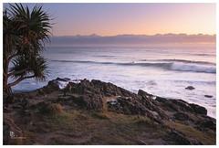 Early morning surf (pbaddz) Tags: beach dawn rocks waves australia pacificocean newsouthwales surfers headland pandanus cabarita