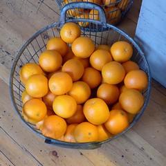 Oranges (moley75) Tags: london basket oranges centrallondon