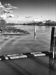 A working river (Explored) (CobbydaleInCanada) Tags: blackandwhite monochrome fraserriver logboom explore explored