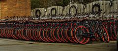One of a kind... (alex.vangroningen) Tags: orange bikes astoundingimage