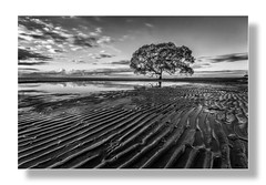 Beachmere Black & White (Allen Images) Tags: meditate mood peace calm impact calmness beachmere