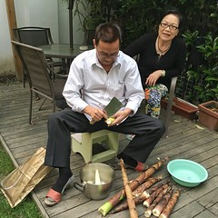 My father-in-law dig the bamboo from neighbor's house and cleaning it for cooking dinner (Alfred Life) Tags: home grandfather  grandmom