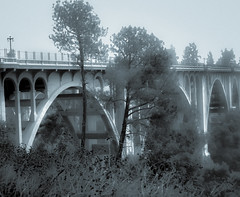 bridge by my old house (nolleone--Nol, like Christmas) Tags: old bridge trees fence mono highkey hff happyfencefriday