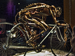 He Rode That Bike To Death (raymondclarkeimages) Tags: usa bike bicycle museum skeleton photography photographer body sony cybershot exhibit bones bodyworlds plastination rci gunthervonhagens imageof pictureof picof raymondclarkeimages 8one8studios
