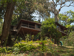 Tree houses (Jackie & Dennis) Tags: kerala treehouse munnar rwh ramblersworldwideholidays naturezoneresort
