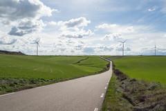 Verde primavera (luisetegt) Tags: verde primavera carretera cereal nubes burgos castillaylen camposdecastilla losbalbases camposdecereal
