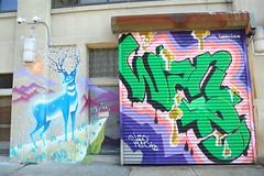 zumi wane (Luna Park) Tags: nyc ny newyork graffiti mural production lunapark cod zumi wane artsorg wanecod