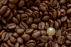 Macro Mondays - One is not like the others (Tria-media_Sven) Tags: coffee kaffee pearl perle oneofthesethings macromonday