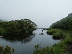 (IgorCamacho) Tags: autumn fall nature rio fog river natureza foggy neblina riograndedosul outono nevoeiro cerrao outoo