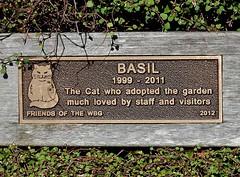 Basil the Cat (1999 - 2011) (mikecogh) Tags: plaque cat memorial wellington basil dates botanicalgarden