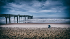 old man and the sea (Eddy Alvarez) Tags: seascape bird beach sunrise person pier waves alone moody florida cloudy outdoor