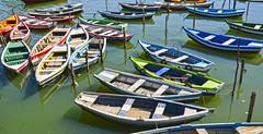 Baiteiras (Cludio Maranho) Tags: boats recife pescador remo riocapibaribe cidadesnordestinas