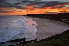 Treachery Sunset (Paul Hollins) Tags: australia newsouthwales aus sealrocks