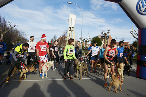 "Canina popular San Silvestre 2015 La Virgen del Camino • <a style=""font-size:0.8em;"" href=""http://www.flickr.com/photos/66442093@N08/23394741954/"" target=""_blank"">View on Flickr</a>"