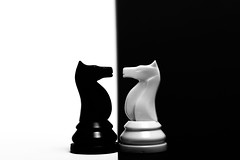 Das Duell (Tria-media_Sven) Tags: canon bestof chess schach canoneos5dmarkiii