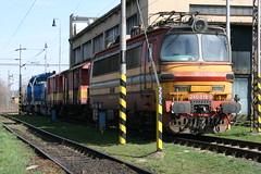 240 019 0 @ Zvolen Depot - Slovakia (uksean13) Tags: canon cargo depot slovakia zvolen ef28135mmf3556isusm 400d zssk 2400190
