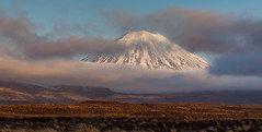Doom through the gloom (zebedee1971) Tags: park blue sunset sky cloud brown mountain snow ice grass yellow rock fog stone canon volcano soft shadows dusk peak lord highlights hills rings national crater doom tongariro tussock ngauruhoe slope vapour whakapapa steep active conical mordor 60d 55250mm natureandnothingelse