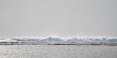 wave. kauai, hawaii y802-14 (s.alt) Tags: ocean sea terrain nature water hawaii see coast meer wasser surf pacific wave kauai wilderness aloha welle napali küste keebeach napalicoast brandung pazifik 808 nāpali natureunveiled weltmeer nāpalicoast keestatebeach