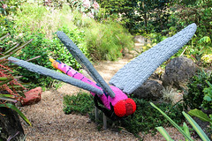 Roseate Skimmer Dragonfly (Phil Goldman) Tags: lego florida dragonfly westpalmbeach 11 february skimmer roseate 2016 mountsbotanicalgardens pgoldman