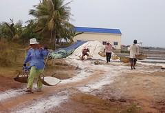 kampot (mrcharly) Tags: people work asia cambodia salt kampot cambodja kampuchea