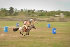 DSCF2515 (Diego Serra) Tags: horses caballos campo carrera paisanos tachos