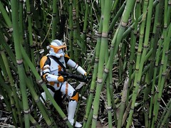 After the Clone Wars, Cody quit the Grand Army and struck off on his own, searching for something to believe in. (jpberba) Tags: trooper toy toys stormtrooper cody clone commander clonetrooper commandercody toyphotography clonearmy afaa afaaninjimpo