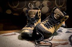Big Boots 6/52 37/366 Pooh (mrmoonlight35) Tags: boots pooh project366 week6theme 52weeksthe2016edition week62016 weekstartingfridayfebruary52016