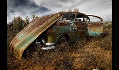 This Never Would Have Happened if You Had Bought a Ford   >:( (Whitney Lake) Tags: abandoned car buick junk rust desert decay special 1952
