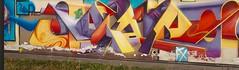 StreetArt Serena80 Bologna (Melvintay) Tags: street art graffito