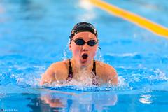 DSC_2194_290116_1853 (Kristiansand svmmeallianse) Tags: swimming swim skagerrak kristiansand ksa aquaram skagerrakswim2016